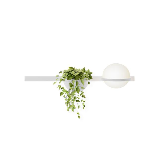 גוף תאורה ייחודי שמשלב גם עציץ, להשיג אצל קמחי תאורה