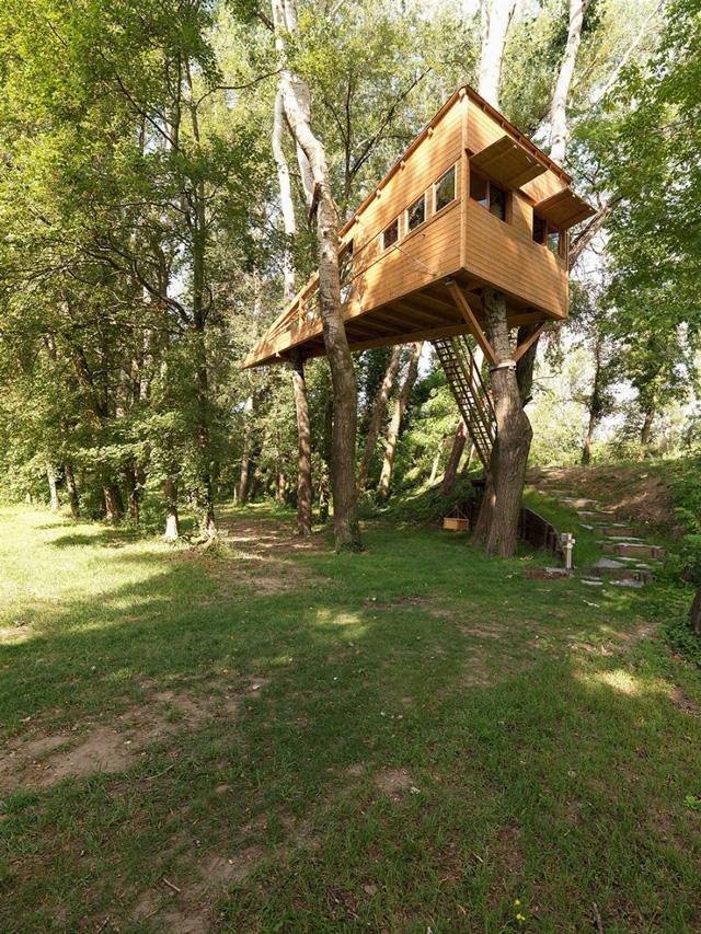 בית מעץ על עץ