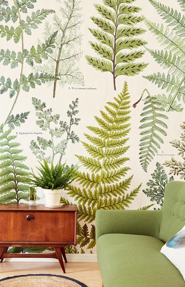 ירוק בעיצוב הבית