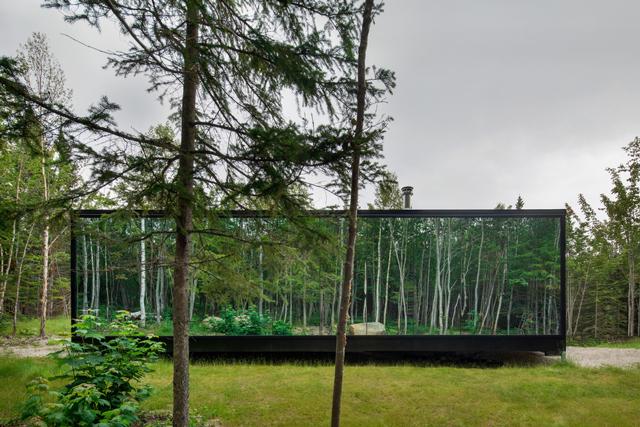 השׁתַקְפוּת של יער